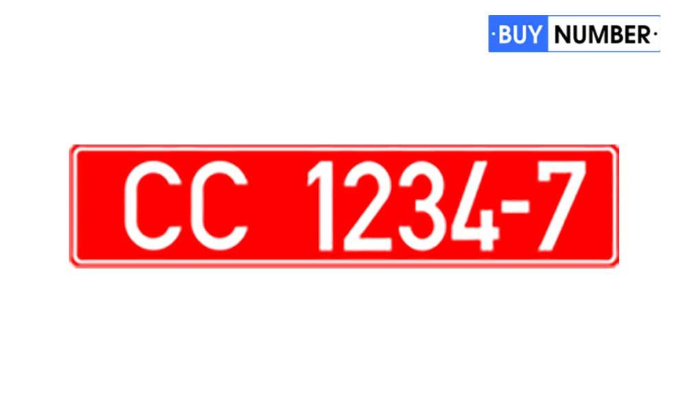 Дубликат Белорусского консульского номера на авто